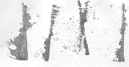 btr-31-p17-0012.JPG (17258 bytes)